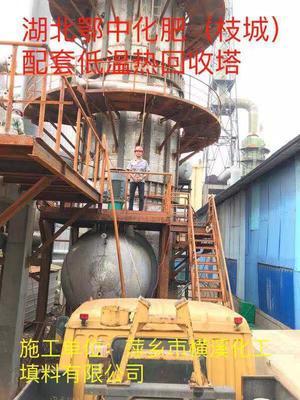 湖北鄂中化肥(枝城)配套低温热回收塔